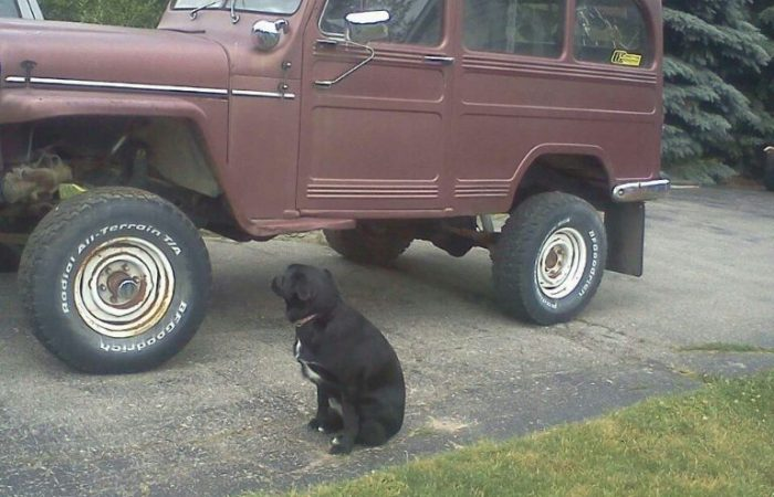 1953 Willys Wagon 4x4 Project