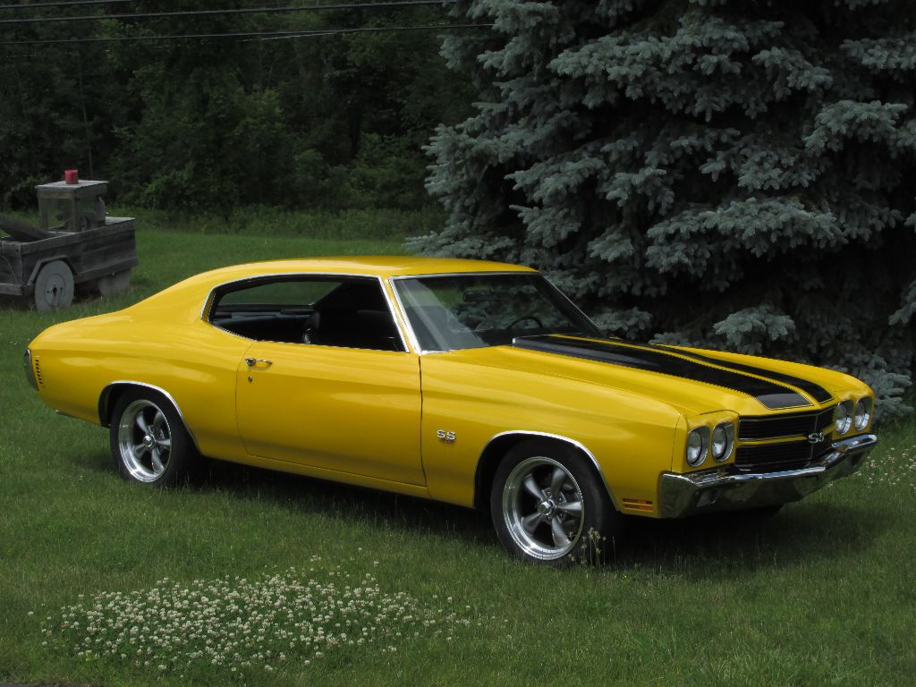 sold 1970 chevelle ss 454 ross customs. Black Bedroom Furniture Sets. Home Design Ideas